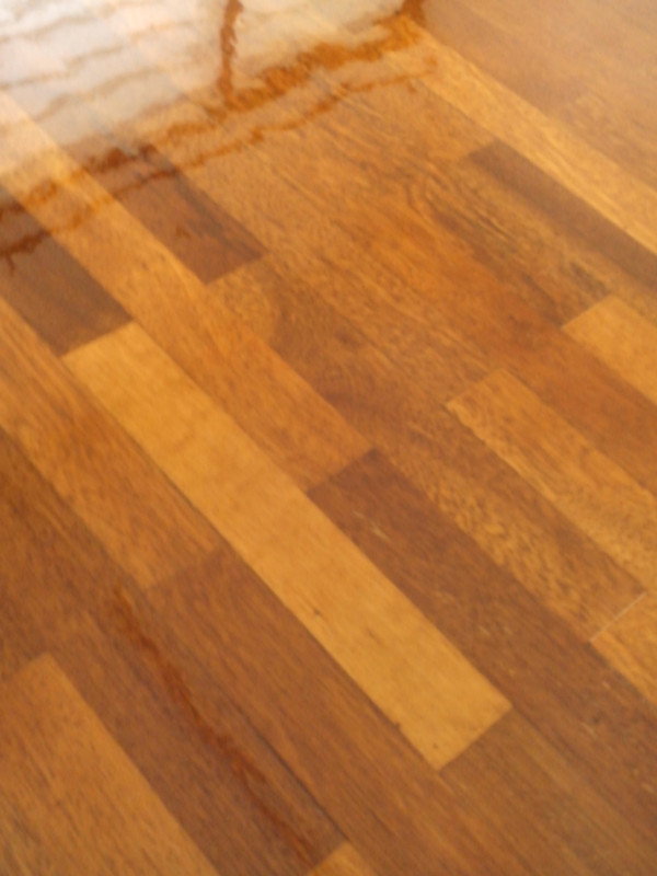 2' x 10' floor after polishing ( havent' dry)